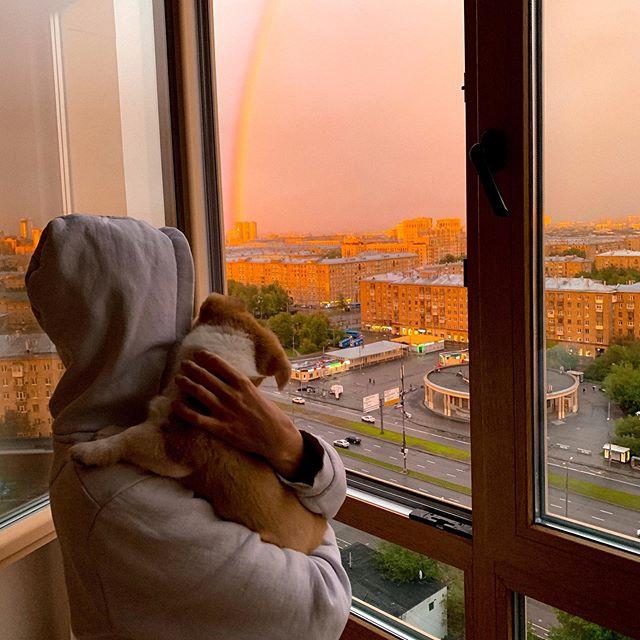 Взять щенка - это пол дела. Стать ему другом, совсем другое 🧡 Радужное майское небо и мой Чарли 🐕